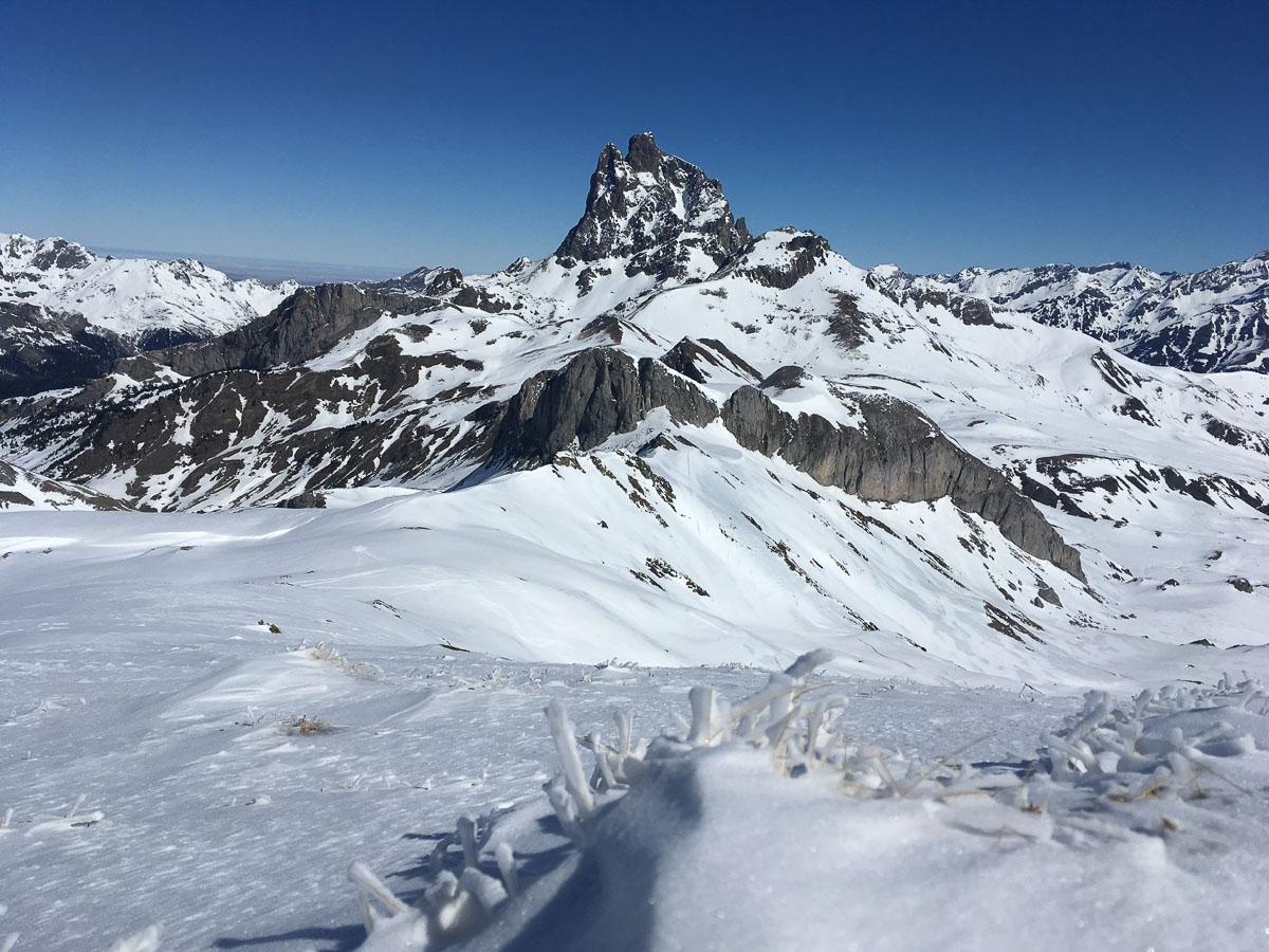 Jeannine Montagne 03.19
